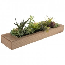 Mixed Succul s In Wood Planter